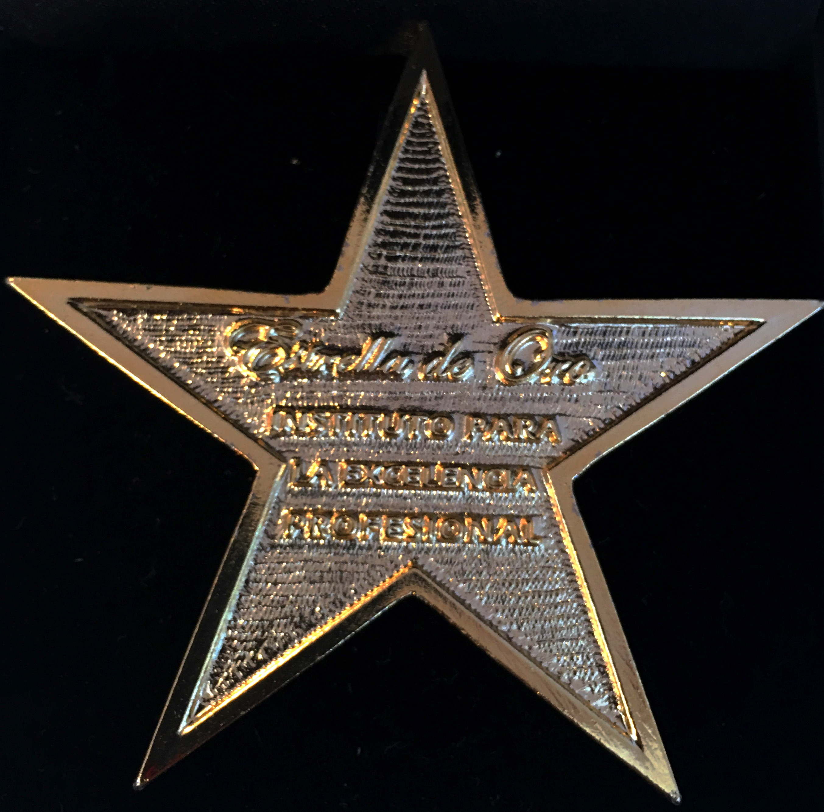 """HYD riceve il premio """"Stella d'oro"""" all' eccellenza professionale."""